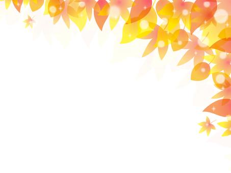Fall image 019