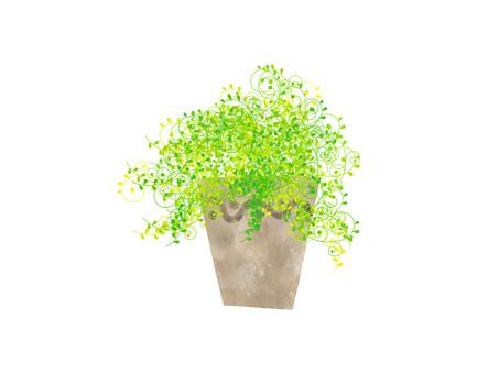 관엽 식물 ver02
