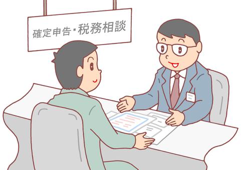 Tax return / tax consultation