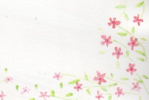 Pink floret