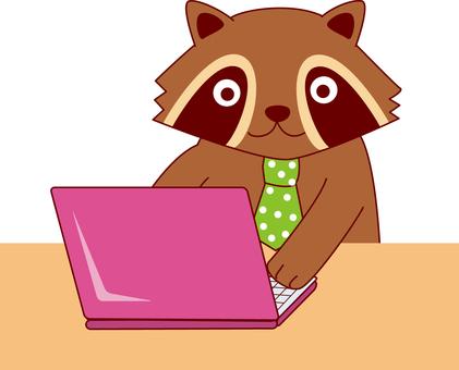 Computer work raccoon