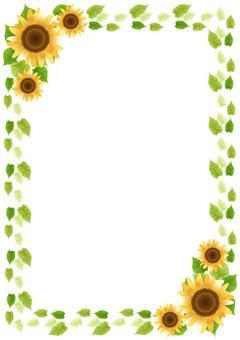 Sunflower 73