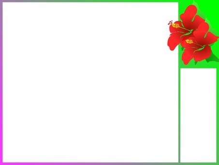 Hibiscus bulletin board