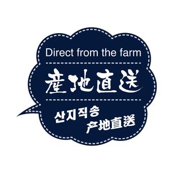 Origin direct delivery (four languages notation)