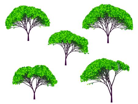 나무의 일러스트 64