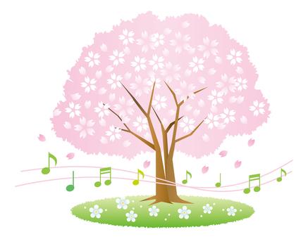 벚꽃 나무와 음악