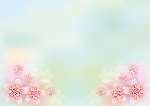 桜 flowers blooming 249