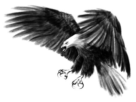 S_ Ink Painting _ Bald Eagle