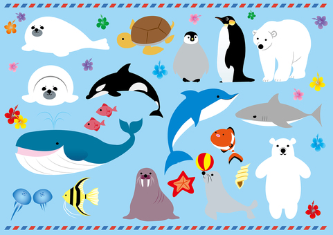 Sea life illustrations material list