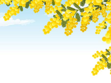 미모사와 푸른 하늘 프레임
