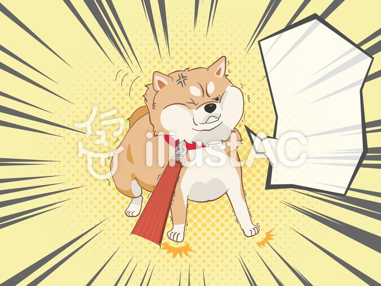 動物-柴犬-吹き出しのイラスト