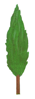 Garden plant 1
