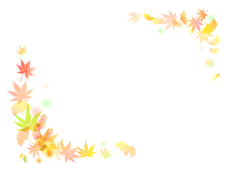 Colored leaves Ginkgo background - 10