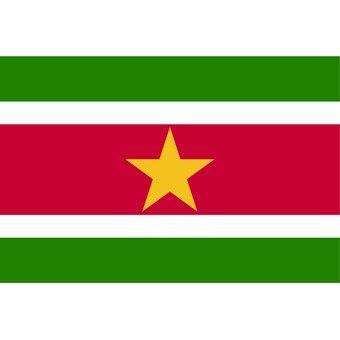 수리남의 국기