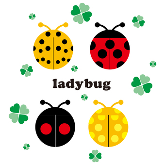 Ladybird and clover
