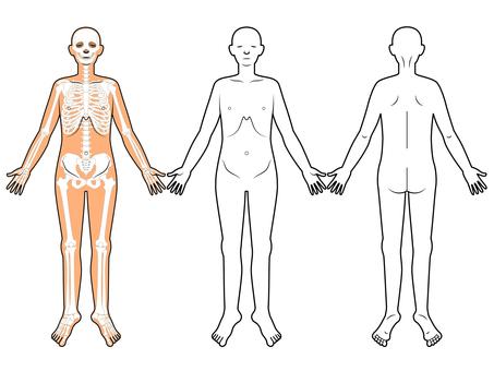 문진표 · 설명 용 · 인체