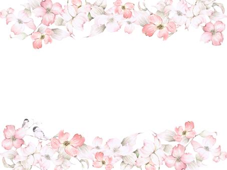 Flower frame 180 - Pink dogwood and cod roe