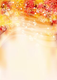Autumn leaves 368