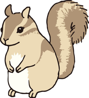 松鼠(花栗鼠1)
