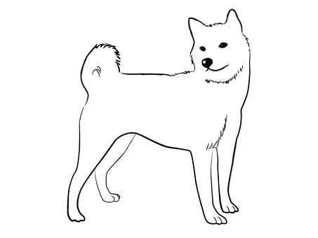 Japanese dog 02