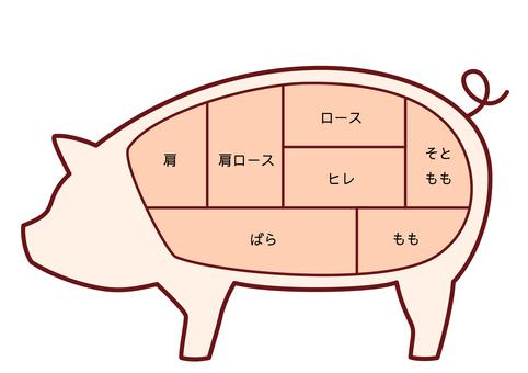 Illustration of the part of pork