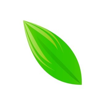Oval leaf 3