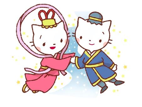 Tanabata Cat