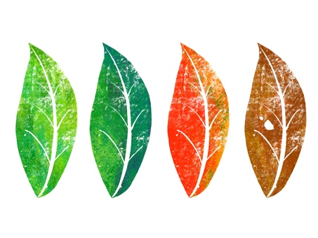 Leaves of the four seasons