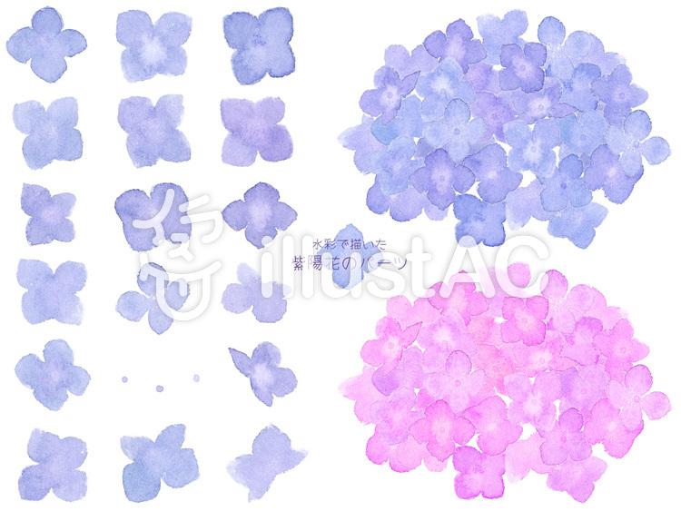水彩で描いた紫陽花とパーツのセット