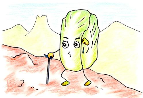 大白菜爬山