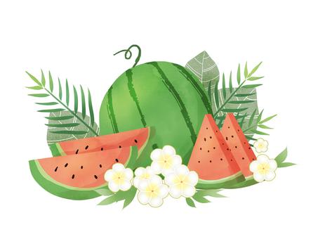 Watermelon and plumeria