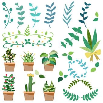Plant illustration plants