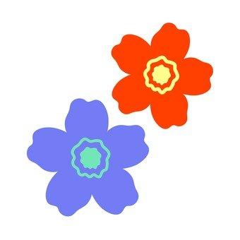 Blue and orange flowers