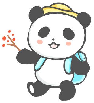 Excursion panda 3