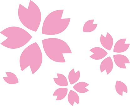 벚꽃의 꽃잎 (사쿠라의 꽃) 벚꽃 곁들이고