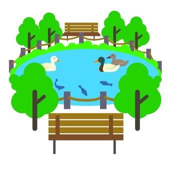 Park's pond