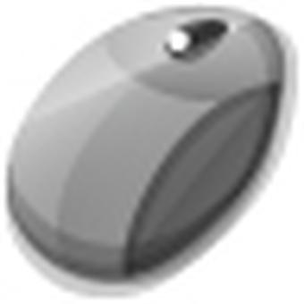 Mouse icon (black)