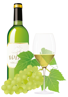 Wine bottle _ white