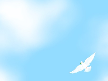 Dove series ☆
