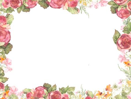 Beautiful color rose flower frame, frame