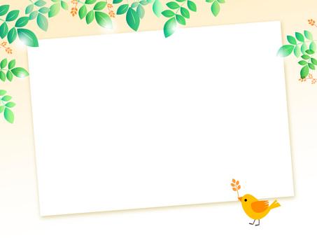Fresh green and small bird board 3-2