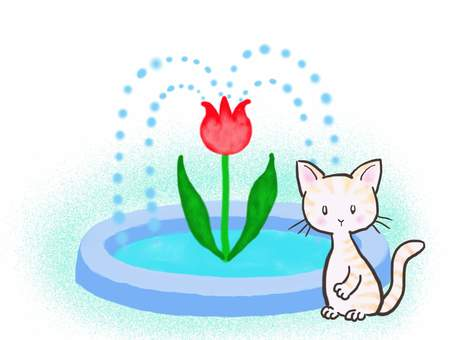 Fountain cat 6