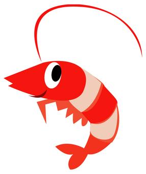 Shrimp ♪