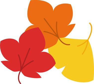 가을 장식 _ 낙엽