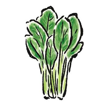 日本芥末菠菜