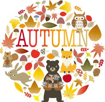 Autumn Material 01 (Autumn)