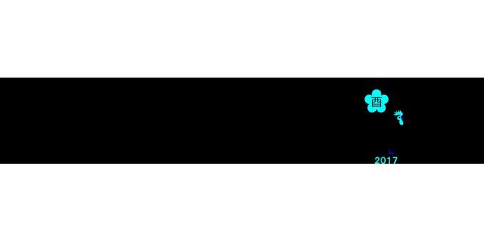 The line of the zodiac (black)