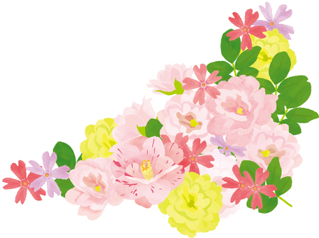 Pink flowers _ 2