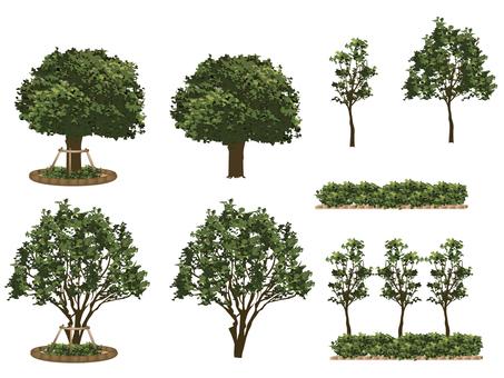 Tree _ set