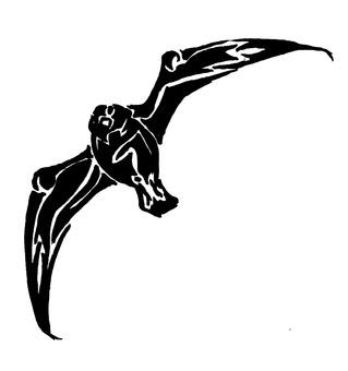 Silhouette seagulls